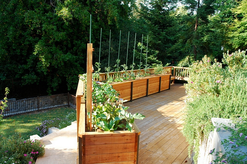 Findng innovative solutions for the urban garden
