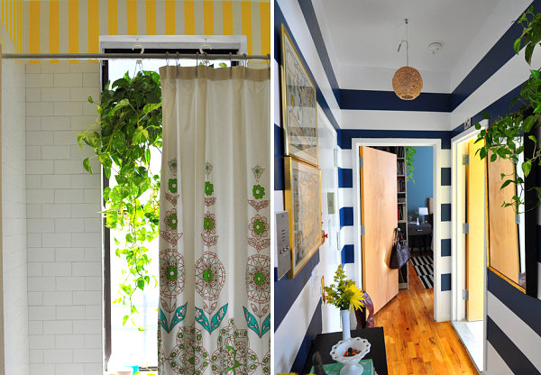 Hanging greenery in a Harlem apartment