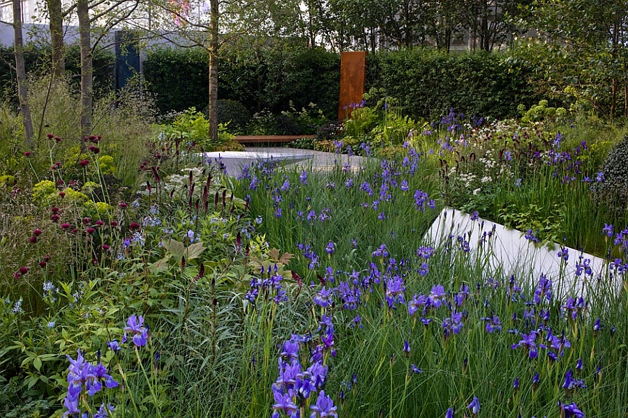 Hugo Bugg RBC Waterscape Garden at the RHS Chelsea Flower Show 2014