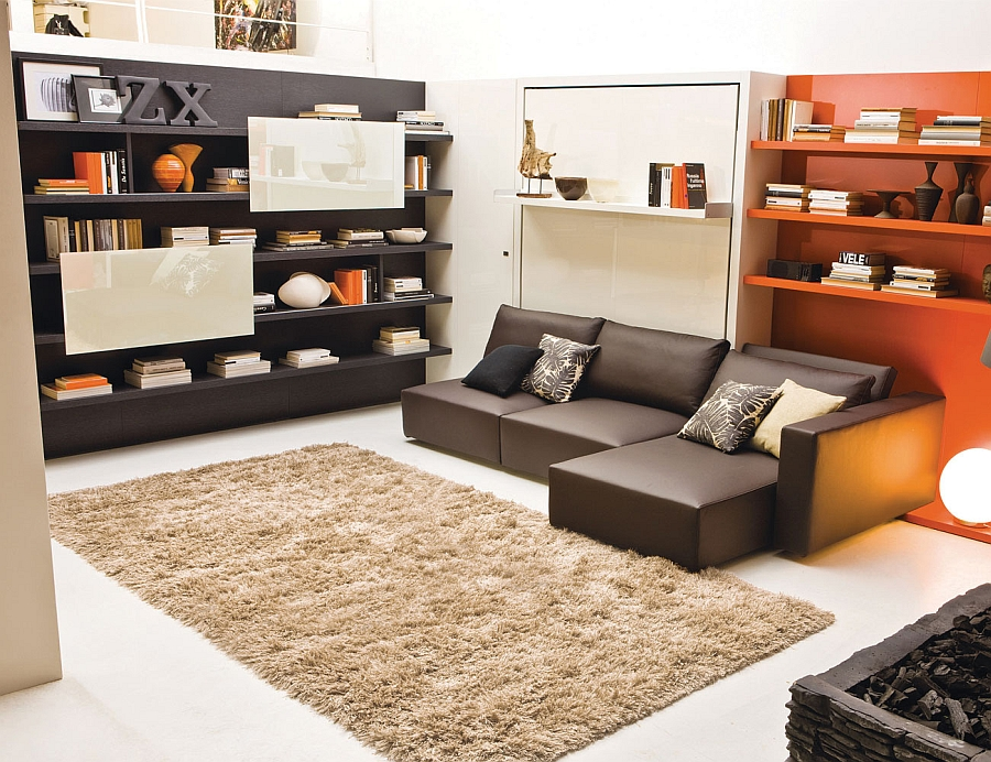 Integrated living panel, double bed and sofa Murphy bed system