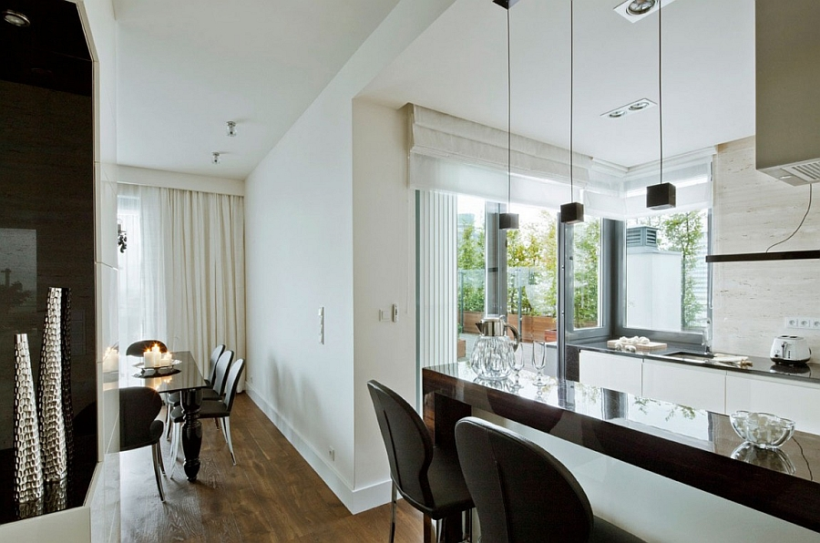 Modern kitchen and serving area of the posh Warsaw apartment