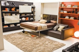 Murphy bed with Sofa Ideas
