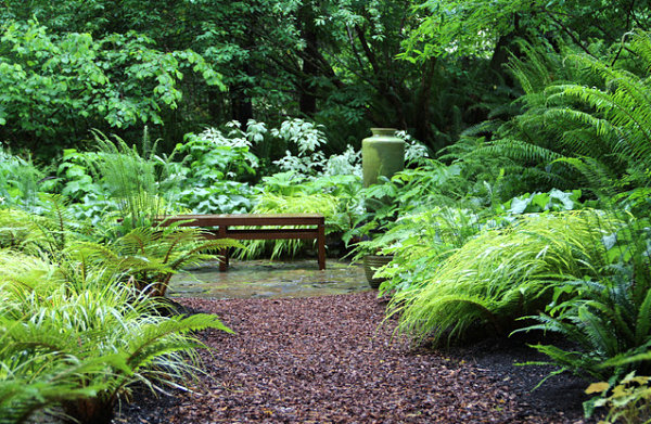 Add shade and serenity to your outdoor space for Shade garden designs