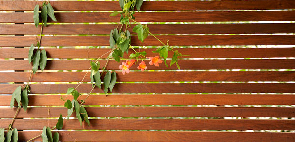 Slatted fencing adds serenity and shade