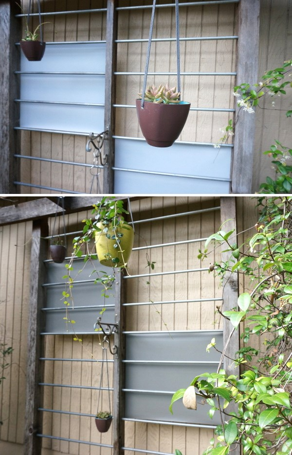A trellis evolves to a darker shade of gray