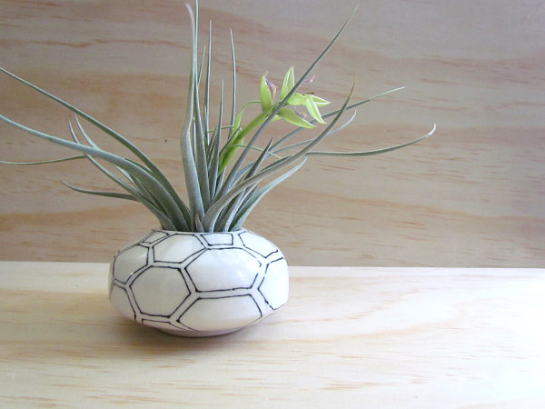 Black and white honeycomb air plant holder from Melissa Maya Pottery