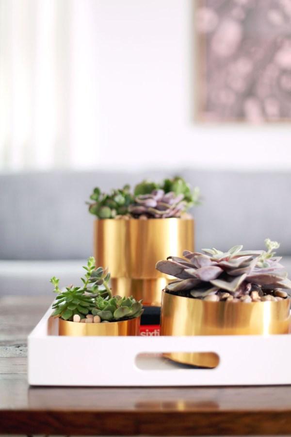 Brass succulent planters