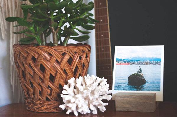 Coral meets a woven planter