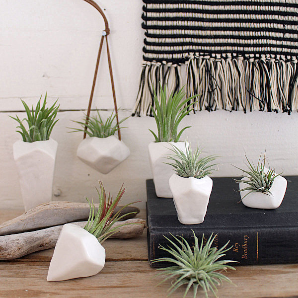 Faceted porcelain air plant holders by Janelle Gramling