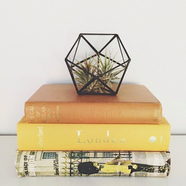 Geometric glass terrarium from Meg A. Myers Designs