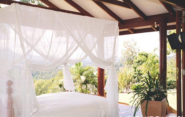 Mosquito net over a tropical bed