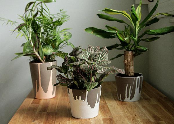 Paint-dipped ceramic pots