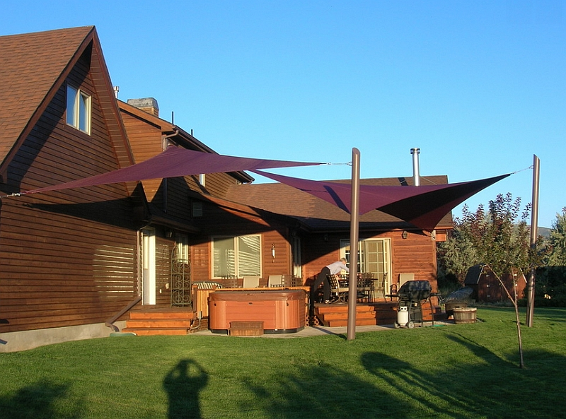 Add some eggplant magic to your summer yard with gorgeous canopies