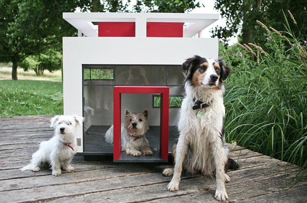 Cubix dog house