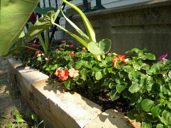 DIY brick paver planter