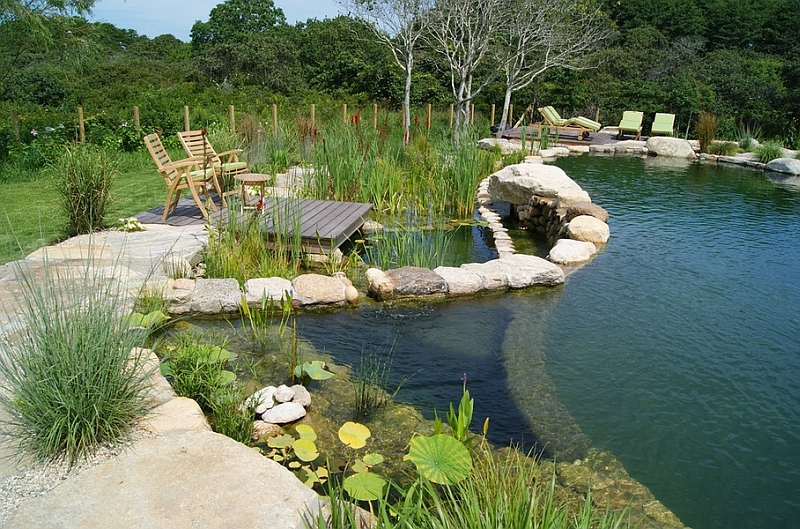 Natural swimming pools design ideas inspirations photos for Keeping ponds clean without filter