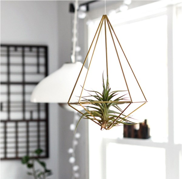 Himmeli air plant holder