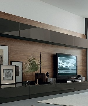 Living Room Wall Unit System Designs