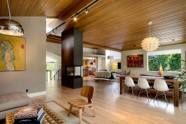 Midcentury modern living room ideas