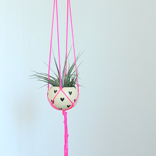Neon macrame air plant hanging planter from Etsy shop ThriftedandMade How To Display Air Plants In Hanging Containers