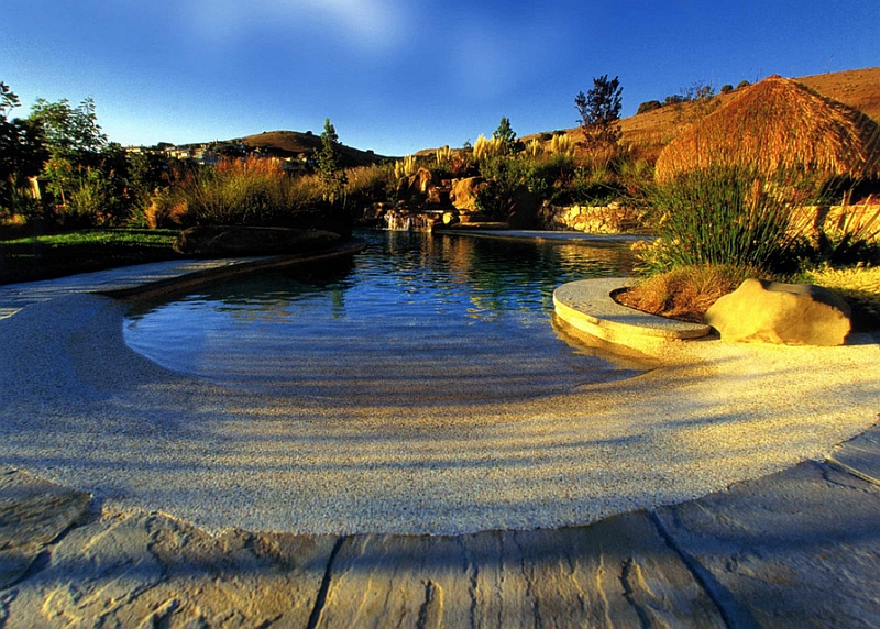 Natural swimming pools design ideas inspirations photos Beach entry swimming pool designs