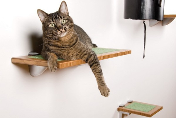 Stylish cat perch 600x401 Modern Pet Decor And Supplies For Your Furry Friend