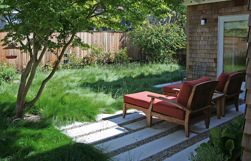 carefully designed low maintenance backyard