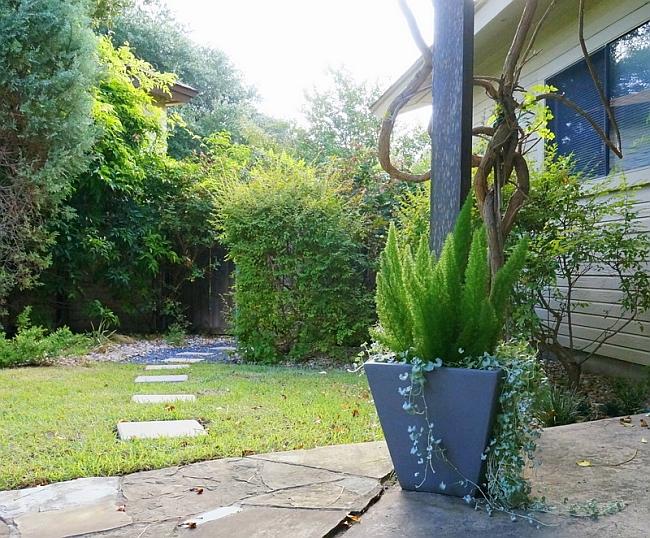 End of Summer Gardening tips