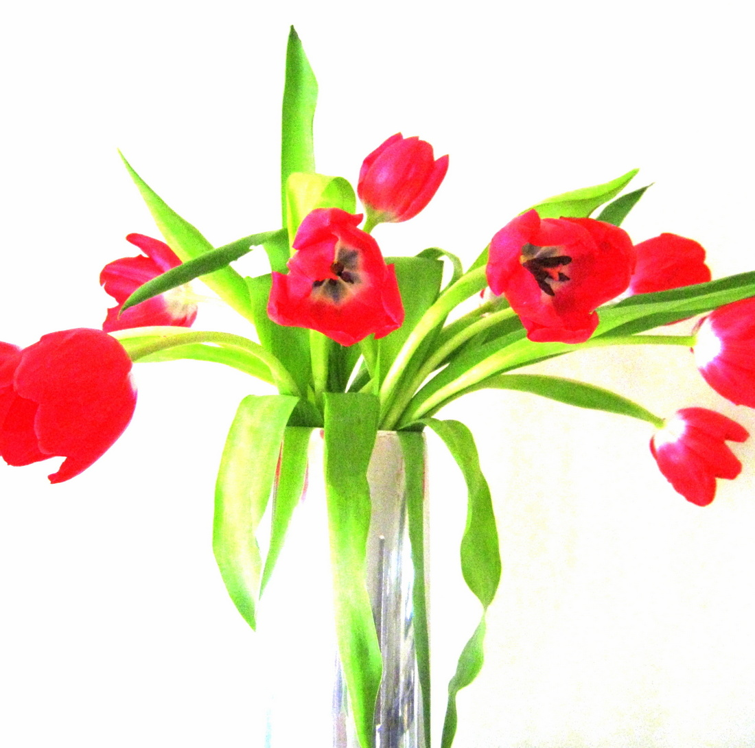 Metal vase filled with tulips