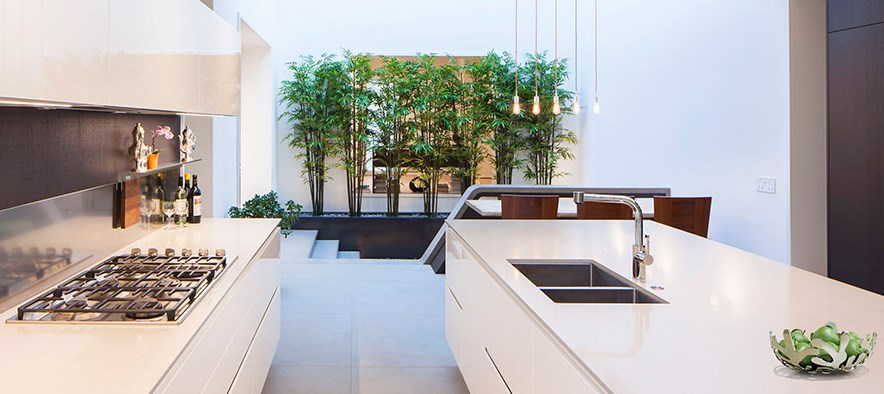 View in gallery Modern kitchen with a screen of plants
