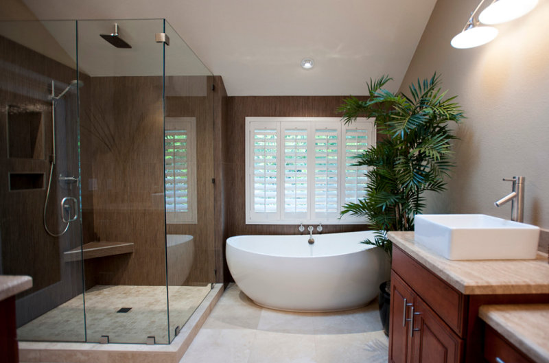 Modern master bath with an indoor palm