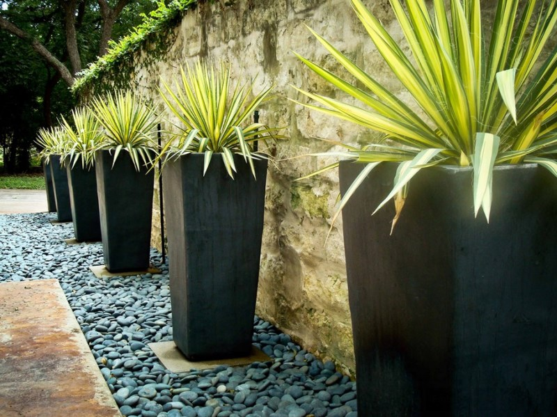 Modern planters in a matching yard