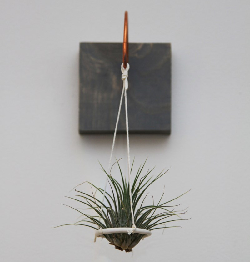 Modern suspended air plant holder from Etsy shop Gems of the Soil