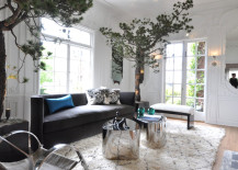 10 Rooms With Elegant Indoor Plants