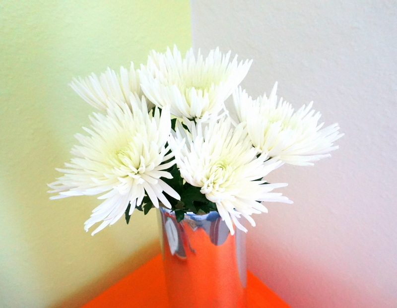 Spider mums in a chrome vase