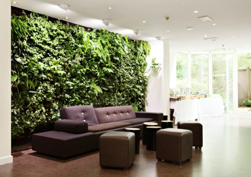 View In Gallery Wall Of Greenery An Indoor Living Area