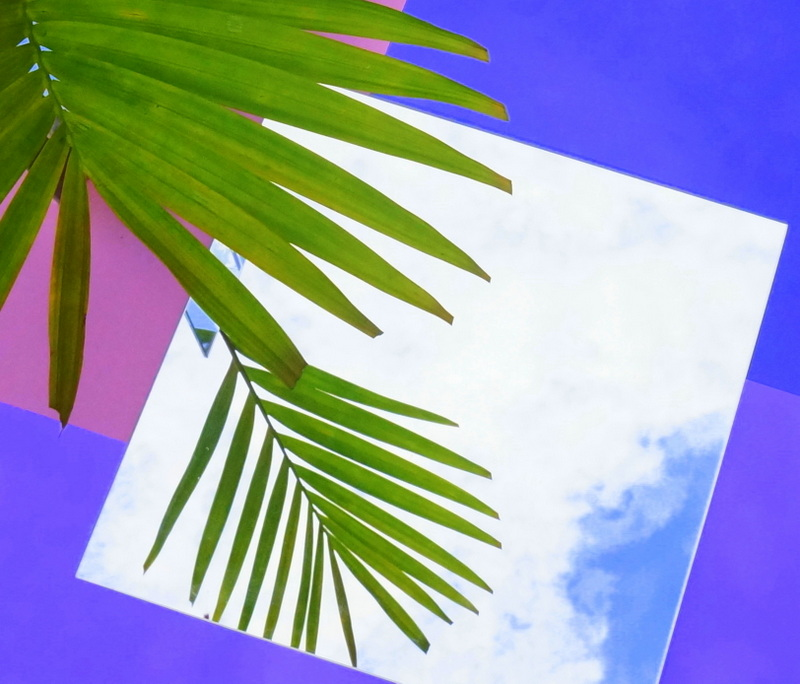 A square mirror reflects clouds and palm leaves