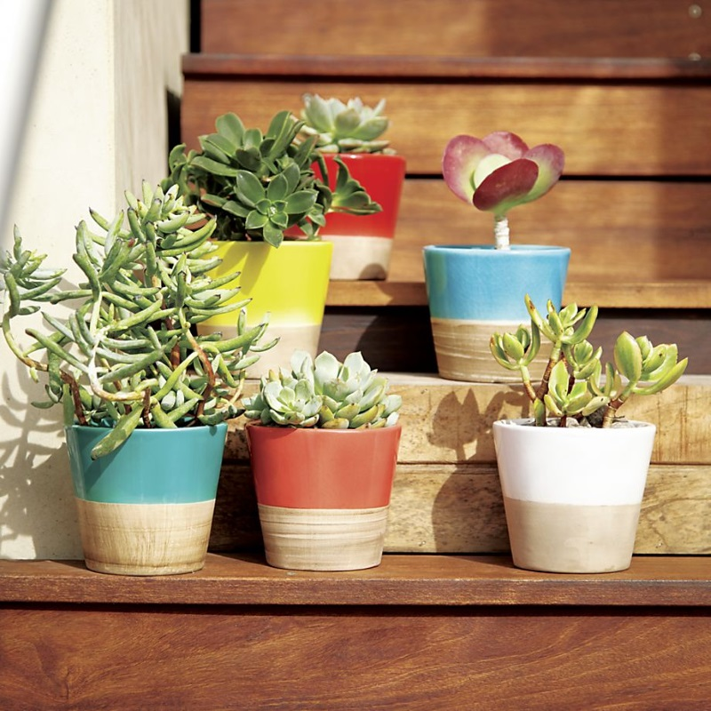 Colorful pots from Crate & Barrel