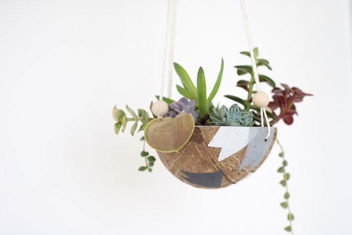 DIY coconut hanging planter
