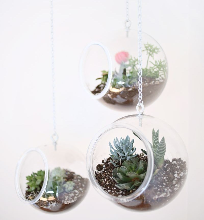 DIY hanging globe planter