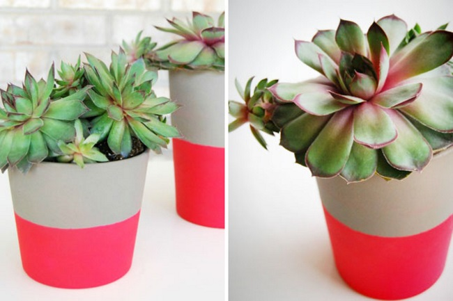 DIY neon dipped pots