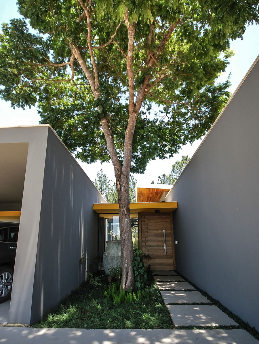 Entrance of the house with a tree between the two access points