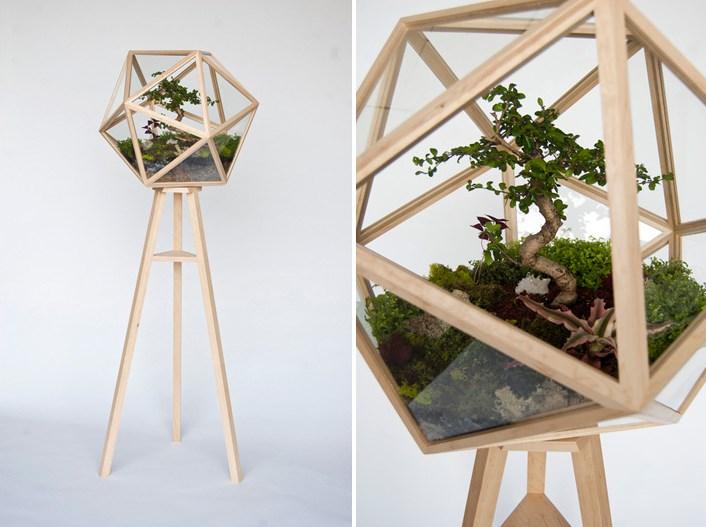 Geometric terrarium from Fort Standard