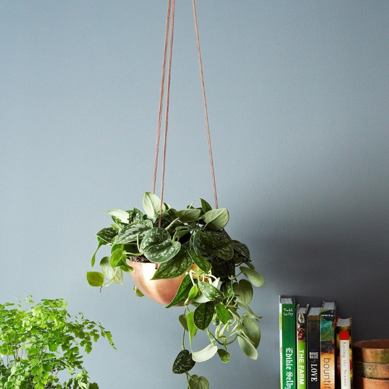 Hanging planter from Etsy shop IN.SEK DESIGN