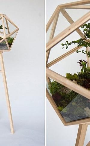 Modern Geometric Terrarium