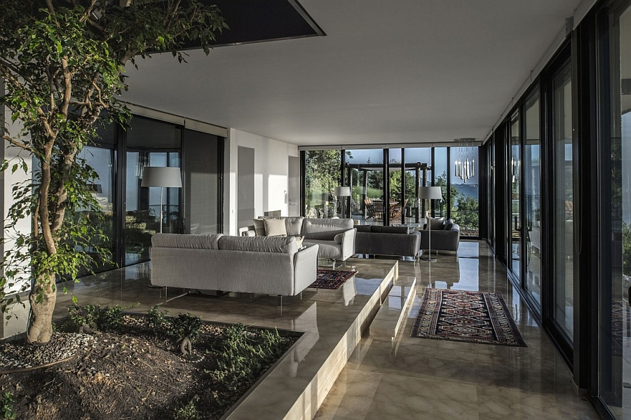 Open floor living area with contemporary style and indoor greenery