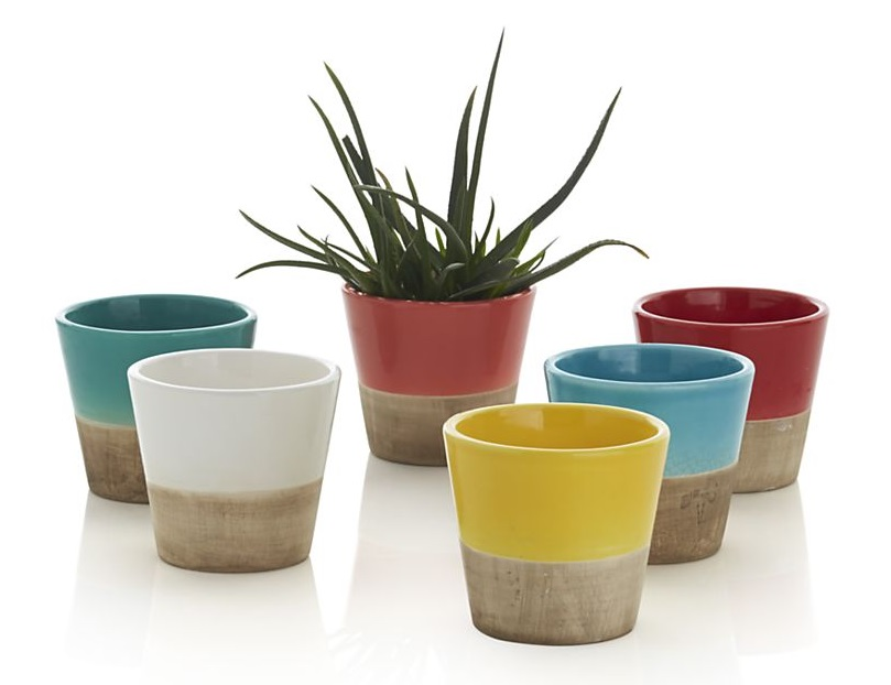 Two-tone earthenware planters from Crate & Barrel