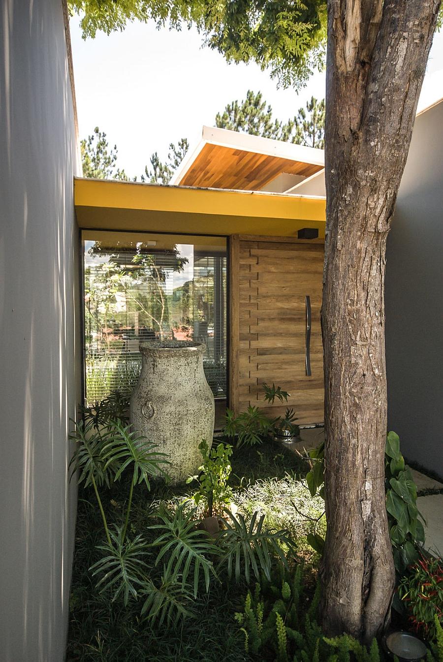 Unique entrance of Brazilian home that incorporates a tree