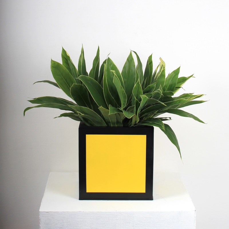 Yellow zinc planter from Darkroom
