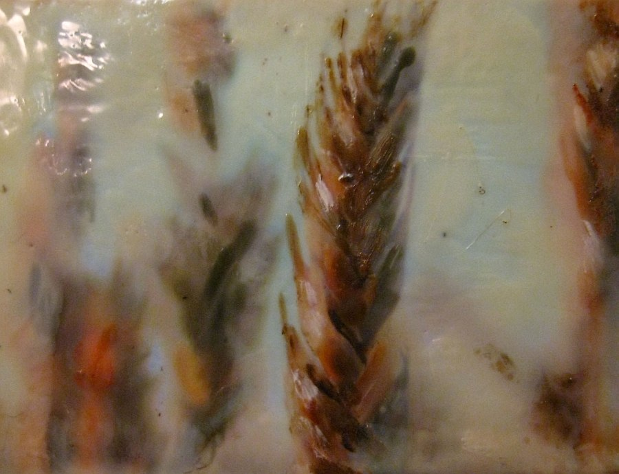 Close up of the Ancient Grains reveals the layered beauty of encaustic art